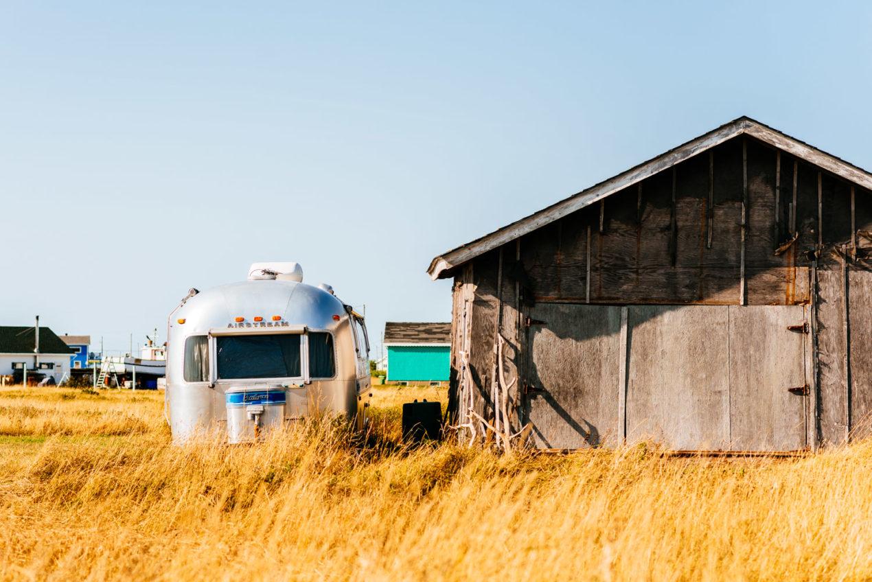 Reactine Seasonal Allergies — Jeff On The Road